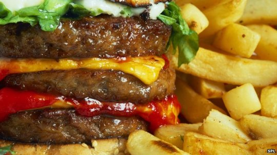 _73185715_h1102318-cheeseburger_and_chips-spl