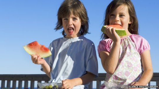 _74414488_children_eating_watermelon-spl2625715