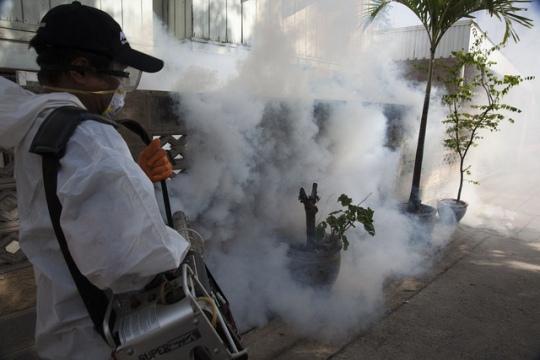 denguealert3